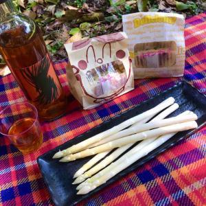 ソーシャル・ディスタンス 週末のひとりピクニック(外出自粛53日目)