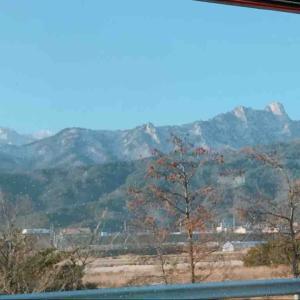 束草からソウルへ戻ります、そしてタコに縁のないあたし達 - 2020.02 ソウル・原州・束草 vol.9