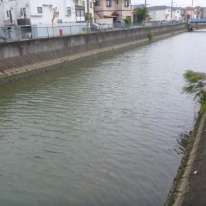 2020/9/24 坂川釣行