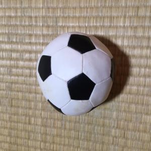少年サッカーを始めたきっかけとそれから