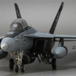 F/A-18F & F-14D 過去作撮りました。