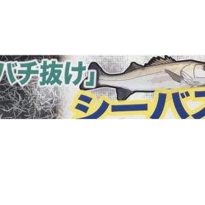 いつもなら〜〜😌 in 泉州 岸和田市 ガラス割れ替え & アルミサッシ屋 ONEスタイル ( ワンスタイル  )