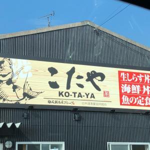 タコ🐙釣り〜〜🎣 in 泉州 岸和田市 リフォーム & アルミサッシ屋 ONEスタイル ( ワンスタイル )