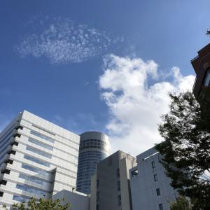 『岡村隆史のオールナイトニッポン歌謡祭in横浜アリーナ2019』