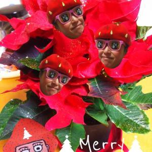 出遅れメリークリスマス