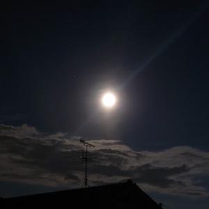 満月🌕輝く