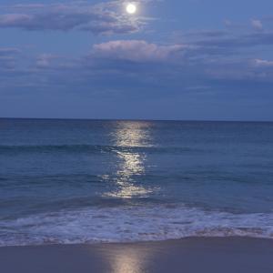 海辺でスーパームーンを眺める