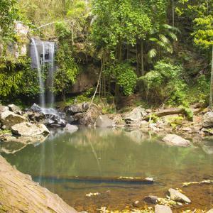 ゴールドコーストは山でも水遊びが楽しめる⁇ 「Tamborine Mountain」