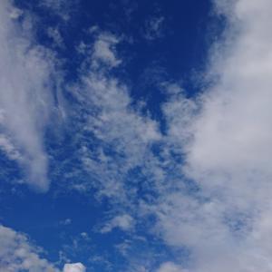 雷雨の後は晴れたよん♪゜・*:.。. .。.:*・♪