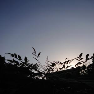 良いお天気です(●^o^●)