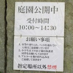【国分寺】2019日立中央研究所庭園開放・春の公開は中止。