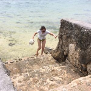体と肌を治療する、海水浴タラソテラピー