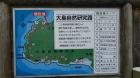大島自然研究路に出かけてきました。
