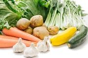 定年退職後から身の丈農業がおすすめ!若者にも野菜栽培が可能か?