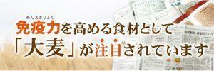 免疫力を高める食材として大麦が注目されています・大麦の和菓子を食べてみてください。