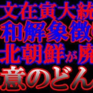 【中央日報】北朝鮮、文大統領の和解象徴物を廃棄…追い込まれる文政権の対北政策  [6/10]  [新種のホケモン★]