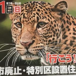 大阪市廃止・特別区設置住民投票、絶対反対