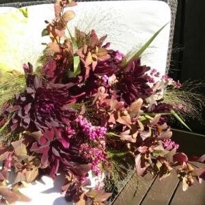 霜月(しもつき)のパリの花【11月レッスンのお知らせ】