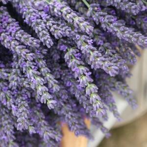 プロヴァンスにいるようなラベンダーの花飾り