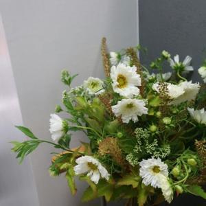 長月(ながつき)のパリの花【9月レッスンのお知らせ】