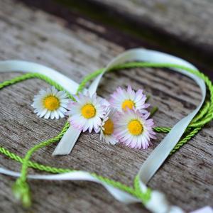 笑顔の花が咲く~