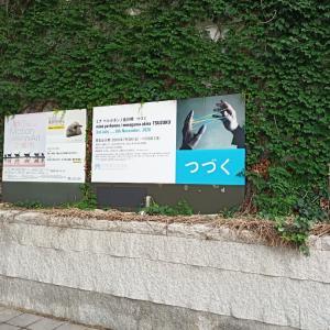 ミナペルホネン展示@兵庫県立美術館
