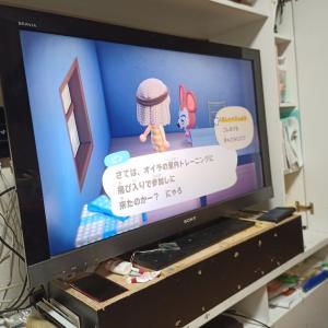 ツワリ始まるー妊娠0→7周目