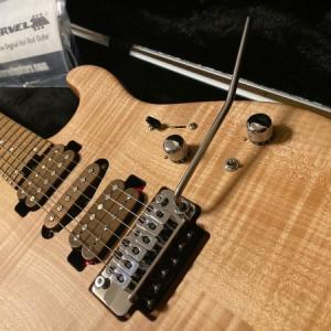 ライブで使ってないギターがもう1本。