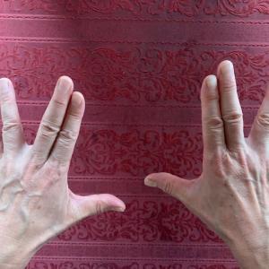 こんな指、できる?