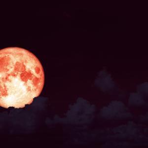 毎月満月の朝は「オンナ♡のかたりば」。明日は山羊座の満月。理想の人間関係とつじつまを合わせる♡