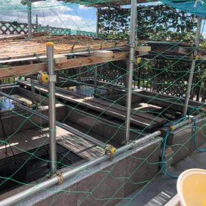 坪池周辺環境整備工事完了