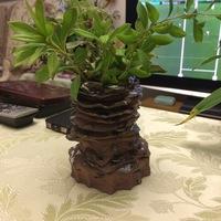久々の楽寿荘陶芸教室作品 岩石ライク花瓶
