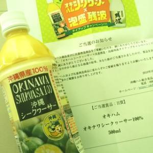 オキナワ シークヮーサー100%♪