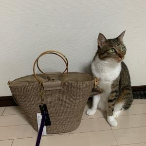 おニューのバッグはみあんの…。