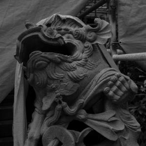 江の島児玉神社の狛犬