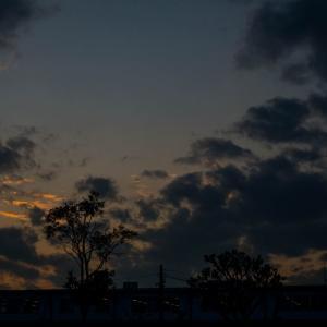 昨日の東京の空
