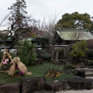 上野東照宮ぼたん苑から眺める五重塔