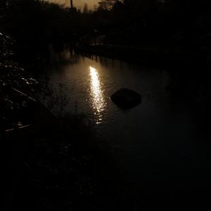 夕日が写る