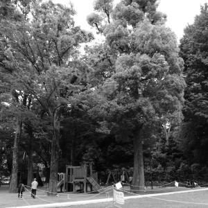 六義園の隣の児童公園
