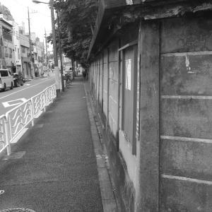 亀戸普門院の塀