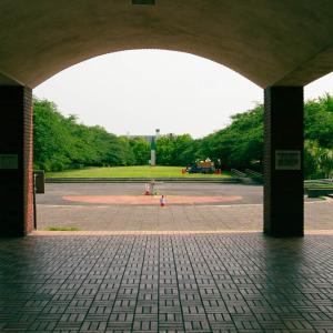 新緑の猿江恩賜公園