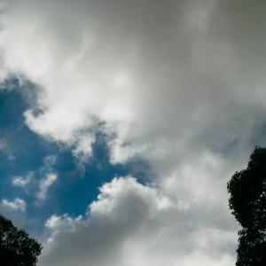 雲が多い東京の空