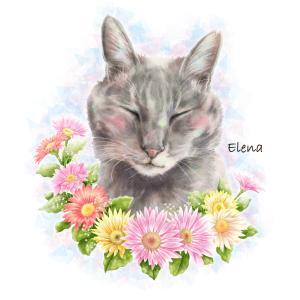 愛猫エレナが虹の橋を渡ってから49日たちました