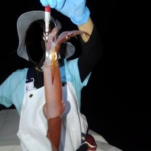 7/22~23 イカメタル 水潮でヒドイ状況 釣魚料理でヤケ酒