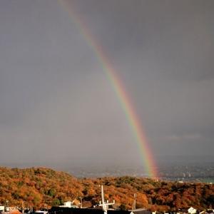 やっと足のリハビリだ~と虹