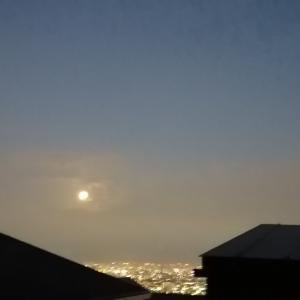 満月でお月見!テンション高めなイタグレ!