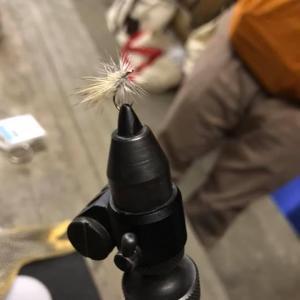 Hino camp Flyfish 2019-2nd(レポート)