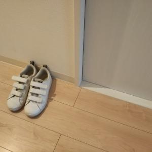 しっくりこない靴を捨てることにしました