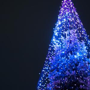 今年も光の祭典の季節がやってきました♪