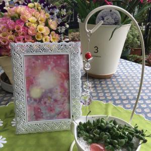 【今晩のメルマガ配信】「植物と妖精」「老後と金運」の話。対極だけど繋がってる!? 金運のお話会